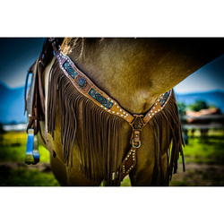 Senora Fringe Beaded Headstall and Breast Collar Set
