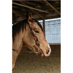 Mesa Headstall and fringe Breast Collar Set