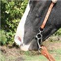 Bonanza Turquoise Gator Print Hide Stirrups