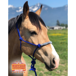 Houston Beading Rope Halter
