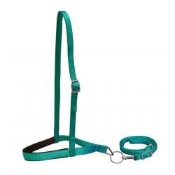 Nylon Noseband and Tie Down
