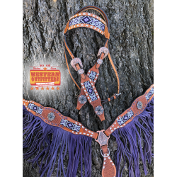 Albuquerque Headstall and...