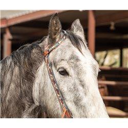 Maroon Cactus Tooled...