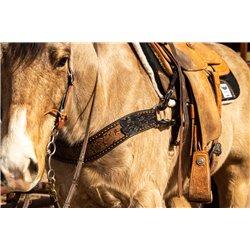 Rodeo Ranch Sunset T-Shirt