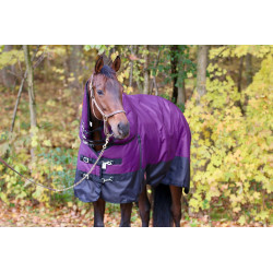 Winter Turnout Blanket :...
